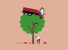 Royalty-free image of a car or automobile stuck up in a tree! Will insurance cover it?