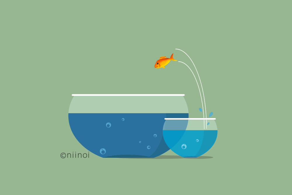 A fish diving from one small pool to a bigger pool.